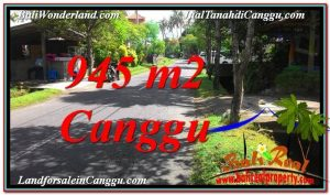 Magnificent PROPERTY Canggu Pererenan BALI LAND FOR SALE TJCG210