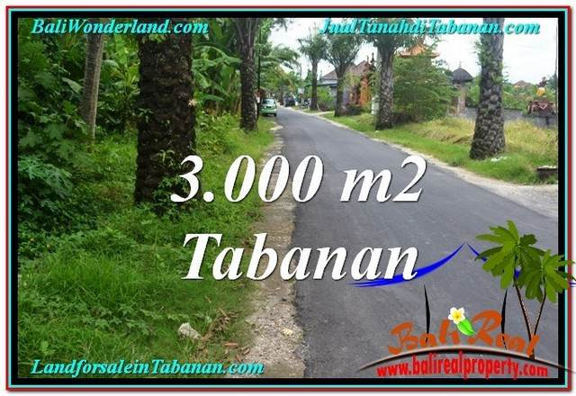 Exotic PROPERTY 3,000 m2 LAND FOR SALE IN Tabanan Kerambitan TJTB297
