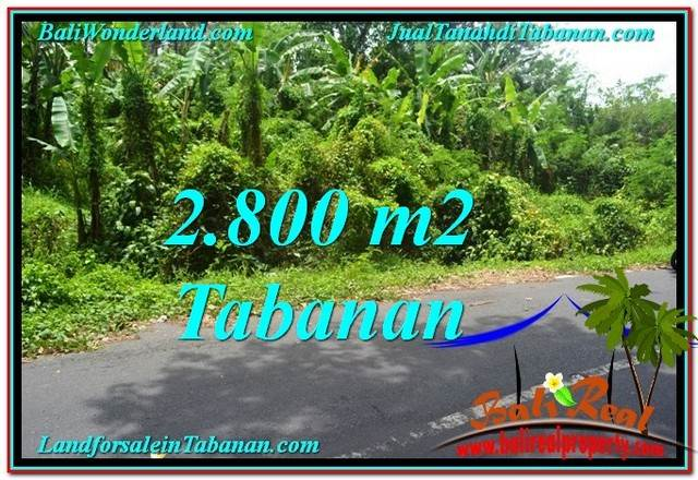 Magnificent 2,800 m2 LAND SALE IN TABANAN BALI TJTB300