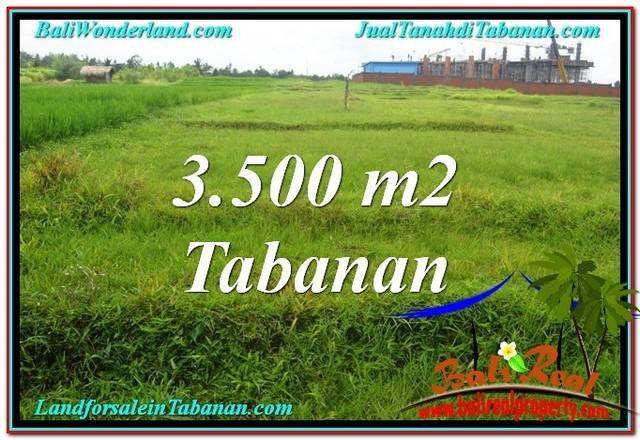 Affordable 3,500 m2 LAND FOR SALE IN TABANAN BALI TJTB302