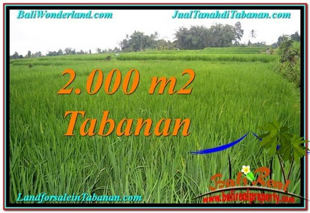 Exotic 2,000 m2 LAND IN TABANAN BALI FOR SALE TJTB303