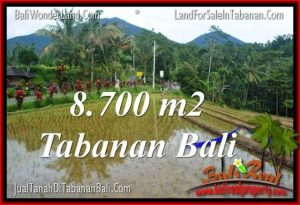 Affordable PROPERTY LAND IN TABANAN FOR SALE TJTB316