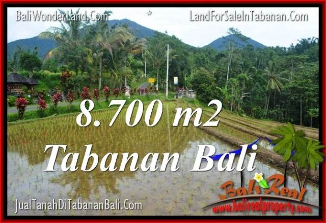Exotic PROPERTY 8,700 m2 LAND FOR SALE IN Tabanan Penebel BALI TJTB316