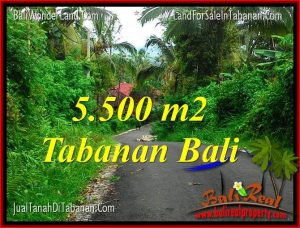 Exotic PROPERTY LAND IN TABANAN BALI FOR SALE TJTB323