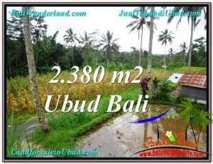 Exotic PROPERTY LAND SALE IN UBUD TJUB567
