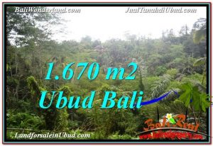 FOR SALE Magnificent PROPERTY LAND IN UBUD TJUB569