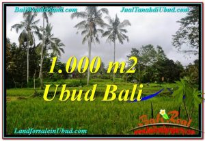 Magnificent PROPERTY LAND IN UBUD FOR SALE TJUB570