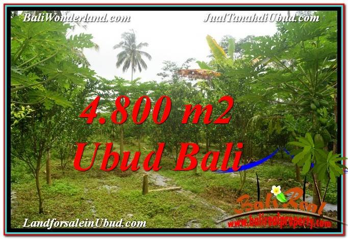 Affordable PROPERTY UBUD LAND FOR SALE TJUB571