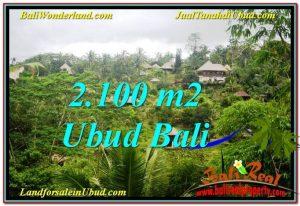 LAND IN Ubud Payangan BALI FOR SALE TJUB572