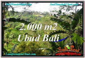 2,000 m2 LAND IN UBUD BALI FOR SALE TJUB573