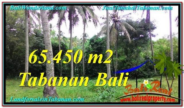 Beautiful PROPERTY LAND SALE IN TABANAN TJTB290