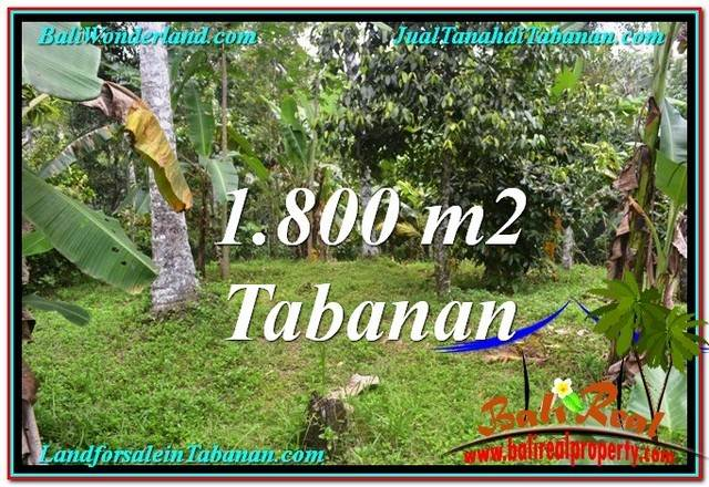 Exotic 1,800 m2 LAND IN TABANAN BALI FOR SALE TJTB293