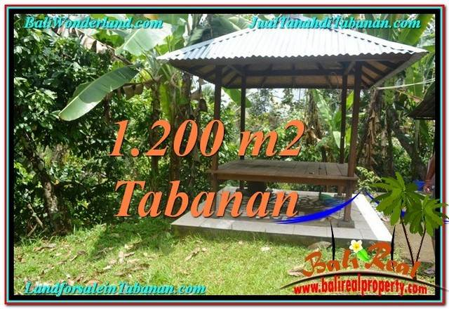 Magnificent TABANAN BALI 1,200 m2 LAND FOR SALE TJTB294