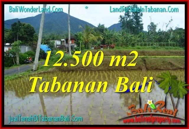 FOR SALE Beautiful PROPERTY 12,500 m2 LAND IN TABANAN TJTB317