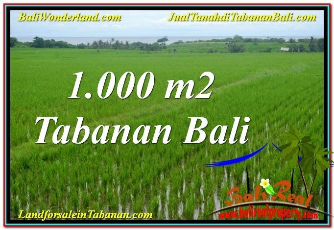 Affordable 1,000 m2 LAND SALE IN Tabanan Kerambitan BALI TJTB307