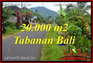Beautiful PROPERTY 20,000 m2 LAND SALE IN Tabanan Penebel BALI TJTB315