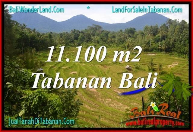 Exotic PROPERTY Tabanan Penebel BALI 11,100 m2 LAND FOR SALE TJTB320