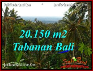 Magnificent 20,150 m2 LAND FOR SALE IN TABANAN TJTB322