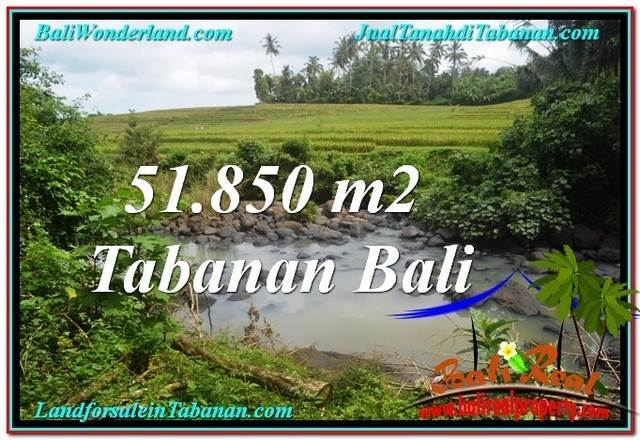 Beautiful PROPERTY Tabanan Selemadeg 51,850 m2 LAND FOR SALE TJTB289
