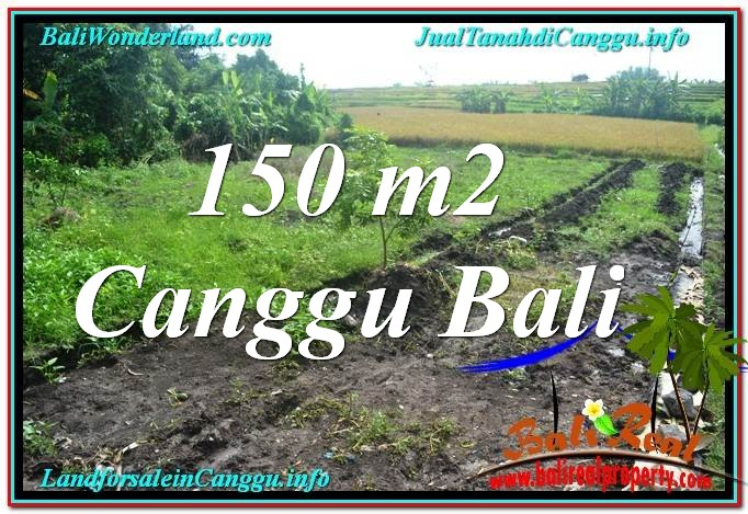 Magnificent LAND SALE IN Canggu Pererenan TJCG213