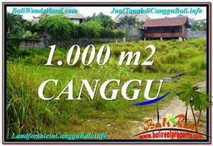 Magnificent PROPERTY Canggu Pererenan BALI LAND FOR SALE TJCG214