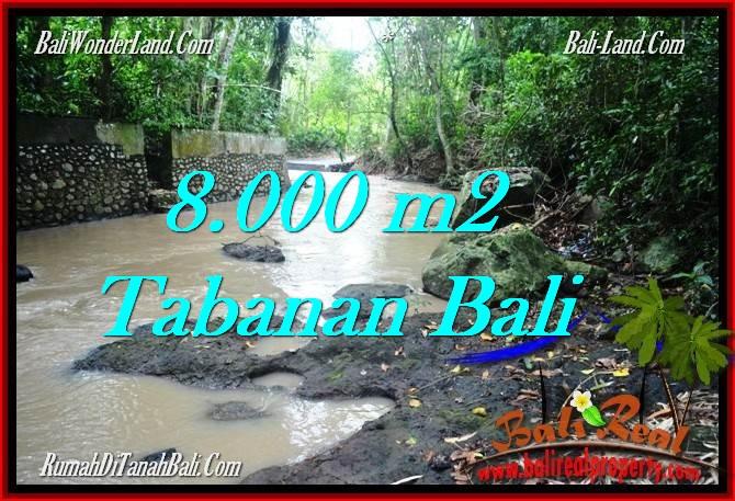 FOR SALE LAND IN Tabanan Selemadeg BALI TJTB287