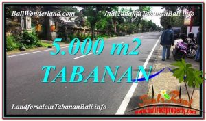 Affordable PROPERTY 5,000 m2 LAND FOR SALE IN TABANAN TJTB332