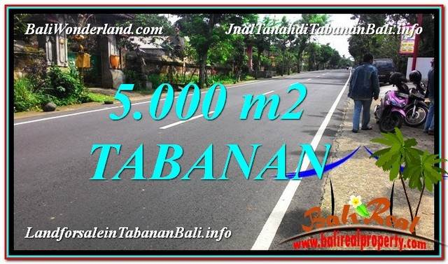 FOR SALE Exotic PROPERTY 5,000 m2 LAND IN Badung TJTB332