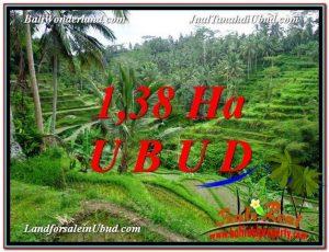Magnificent 13,800 m2 LAND IN UBUD BALI FOR SALE TJUB590