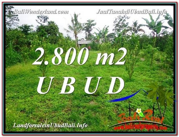 Exotic LAND SALE IN Ubud Tegalalang BALI TJUB592