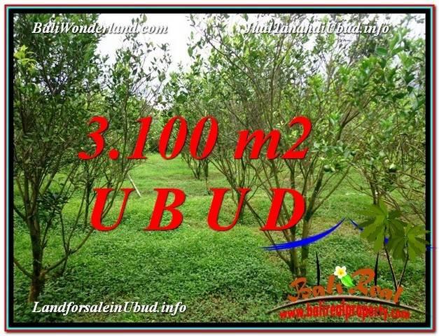 Exotic 3,100 m2 LAND SALE IN UBUD BALI TJUB593