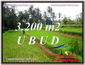 Affordable PROPERTY 3,200 m2 LAND SALE IN UBUD BALI TJUB594