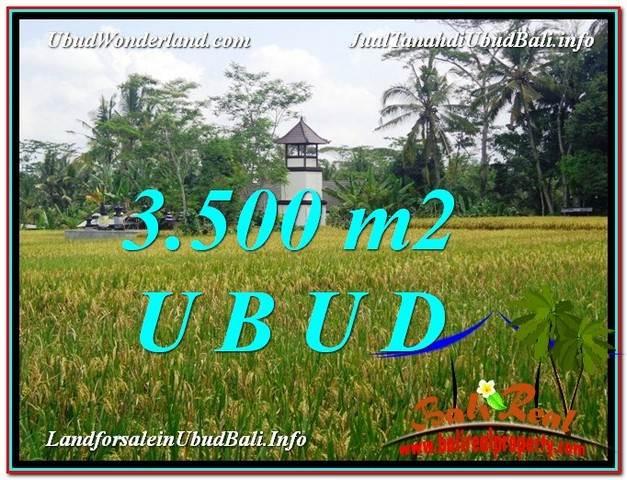 Magnificent 3,500 m2 LAND IN UBUD BALI FOR SALE TJUB596