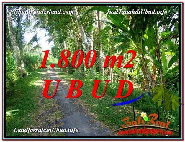 Beautiful 1,800 m2 LAND FOR SALE IN Ubud Payangan TJUB597