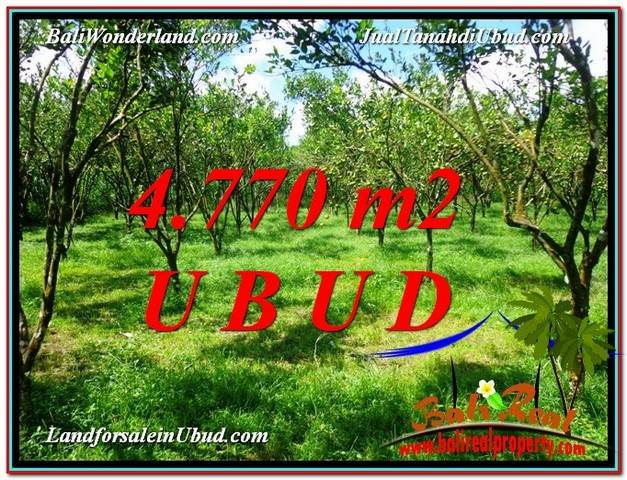 Beautiful UBUD BALI 4,770 m2 LAND FOR SALE TJUB598