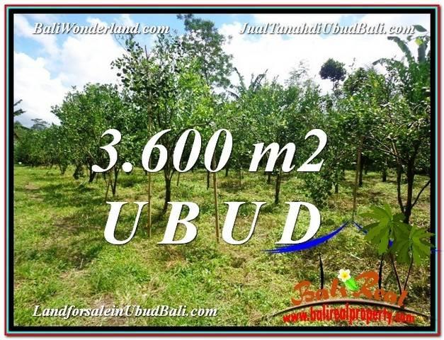 Affordable PROPERTY 3,600 m2 LAND IN Ubud Tegalalang FOR SALE TJUB599
