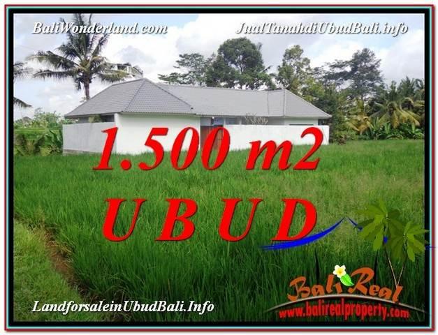 Magnificent PROPERTY UBUD LAND FOR SALE TJUB600