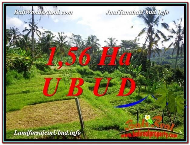 Magnificent PROPERTY LAND SALE IN UBUD TJUB601