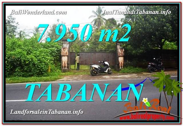 Magnificent 7,950 m2 LAND SALE IN TABANAN BALI TJTB331
