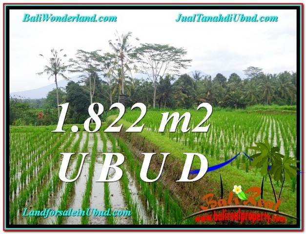 Beautiful PROPERTY 1,822 m2 LAND FOR SALE IN Ubud Payangan TJUB574