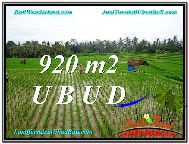 LAND SALE IN Ubud Payangan BALI TJUB575