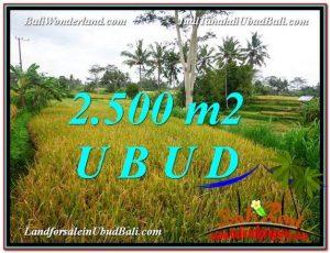 Affordable PROPERTY UBUD LAND FOR SALE TJUB577