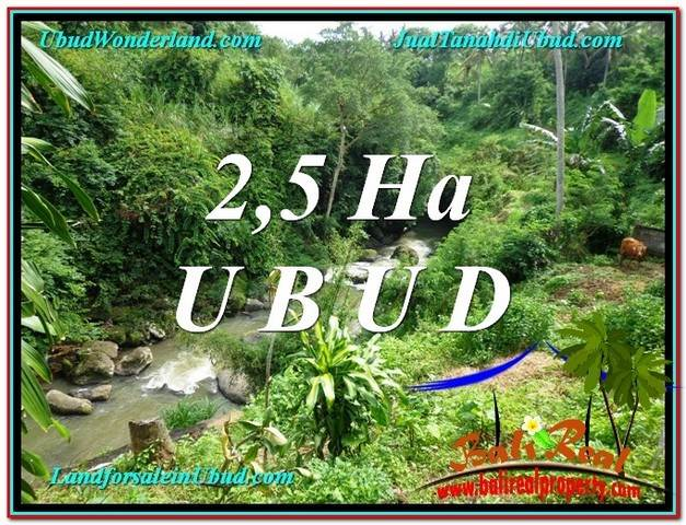 Magnificent LAND FOR SALE IN UBUD TJUB579