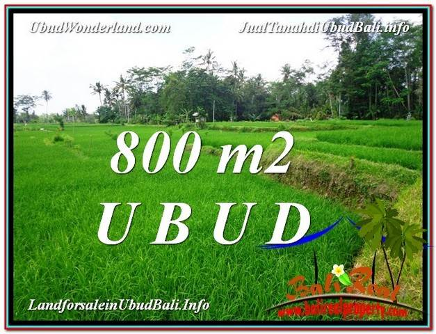 Affordable PROPERTY UBUD LAND FOR SALE TJUB581