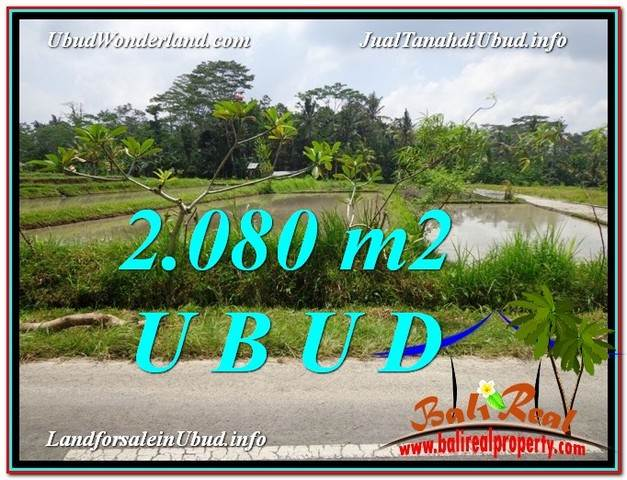 Beautiful PROPERTY 2,080 m2 LAND IN Ubud Pejeng FOR SALE TJUB582