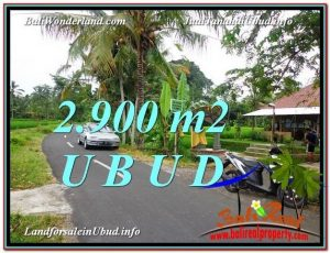 Exotic 2,900 m2 LAND FOR SALE IN UBUD BALI TJUB586