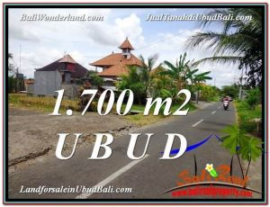 Exotic 1,700 m2 LAND FOR SALE IN UBUD BALI TJUB588