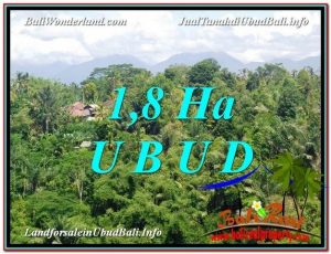 FOR SALE Magnificent 18,000 m2 LAND IN UBUD BALI TJUB589