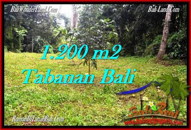 Affordable 1,200 m2 LAND IN TABANAN BALI FOR SALE TJTB278