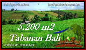 5,200 m2 LAND IN TABANAN BALI FOR SALE TJTB281